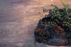 植物布置、干花、莓果和青苔 免版税库存照片
