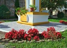 植物开花的红色花在修道院庭院,塞尔维亚里 库存照片
