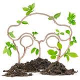 植物汽车 免版税库存图片
