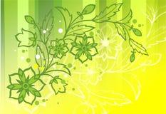 植物生长的背景 免版税图库摄影