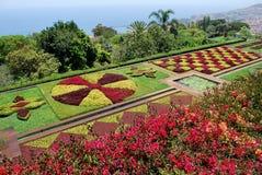 植物的丰沙尔庭院马德拉岛 库存照片