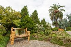 植物的公园 库存图片