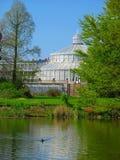 植物的哥本哈根庭院 免版税库存照片