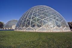 植物的圆顶庭院 免版税库存照片