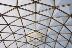 植物的圆顶玻璃模式屋顶 免版税图库摄影