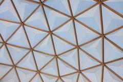 植物的圆顶玻璃模式屋顶 免版税库存照片