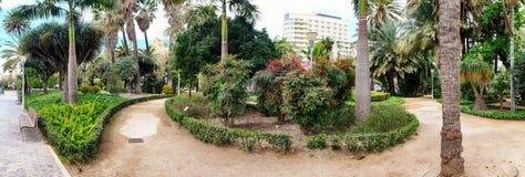 植物的城市公园在马拉加,西班牙 免版税库存图片