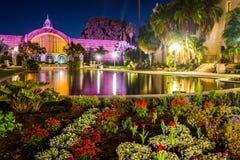 植物的大厦和百合在晚上筑成池塘 免版税库存照片