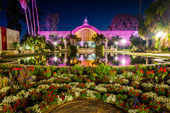 植物的大厦和百合在晚上筑成池塘 免版税库存图片