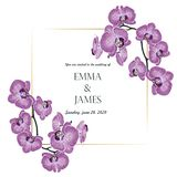 植物的婚姻的请帖模板设计,紫罗兰色兰花花分支与金黄框架