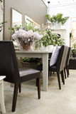 植物的室内空间 免版税库存照片