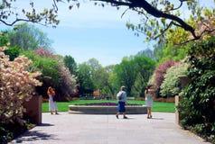 植物的布鲁克林庭院纽约 免版税库存图片