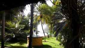植物的庭院Molino del印加人托雷莫利诺斯角 免版税图库摄影