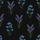 植物的无缝的样式用被绣的开花的淡紫色和勿忘草在黑背景开花 靠山 库存例证