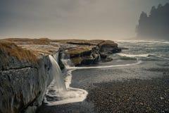 植物的海滩,胡安・德富卡足迹,口岸兰福庐阿, BC,温哥华 库存图片
