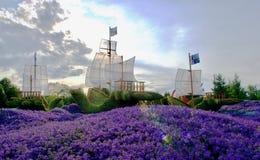 从植物的美丽的船 库存图片