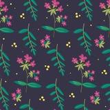 植物的花卉无缝的样式 传染媒介花印刷品 库存图片