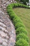 植物的详细资料庭院路径石头 免版税库存图片
