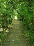 从植物的隧道在城堡庭院里 图库摄影