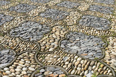 植物群石路面 图库摄影