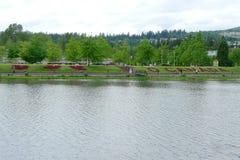 植物群红槭莱沃和由湖的` O加拿大` 免版税库存图片