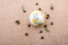 植物荚,与地球的胶囊在中部 免版税图库摄影