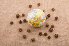 植物荚,与地球的胶囊在中部 免版税库存图片