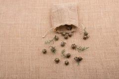 植物荚,在大袋外面的胶囊 库存图片