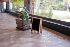 植物装饰 免版税库存照片