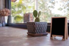 植物装饰 库存图片
