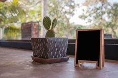 植物装饰 免版税图库摄影