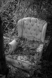 植物长满的豪华扶手椅子 图库摄影