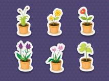 植物贴纸 库存图片