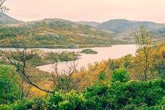 植被围拢的苏格兰高地的小湖 库存照片