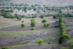植被巴西东北半干旱照亮与日落的温暖的颜色 免版税库存图片