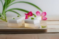 椰奶果冻、甜点包含果冻粉末的,糖和椰奶 库存照片