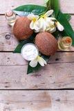 椰子、椰子油和牛奶 免版税库存照片