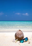 椰子、花和太阳镜在海滩 免版税库存图片