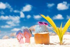 椰子、触发器、太阳镜和一棵小的棕榈在白色沙子靠岸 库存照片