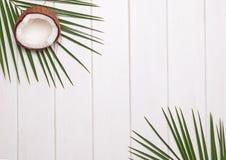 椰子一半和棕榈叶在白色木桌上 免版税库存照片