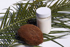 椰子下落例证油传统化了 免版税库存图片