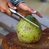 椰子准备:切开 图库摄影