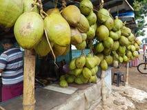 椰子卖主 图库摄影