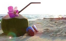 椰子和太阳镜节日快乐 库存图片