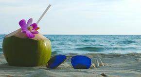 椰子和太阳镜 免版税库存照片