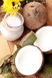 椰子和牛奶、油椰树有机健康食物的和秀丽 免版税库存图片