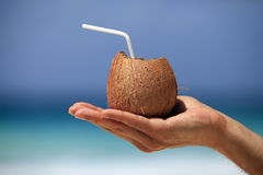 椰子在一个人的手上 免版税库存图片