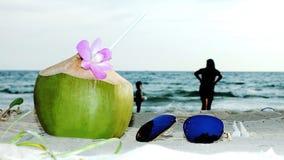 椰子在假日 库存图片
