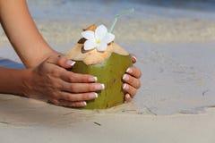 椰子在女孩的手上 免版税库存图片