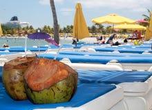 椰子当在收获Caye,伯利兹的海滩摘要 库存照片